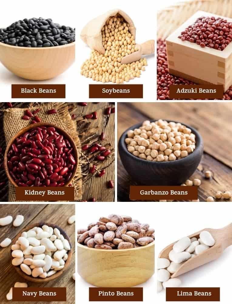 Different varieties of beans